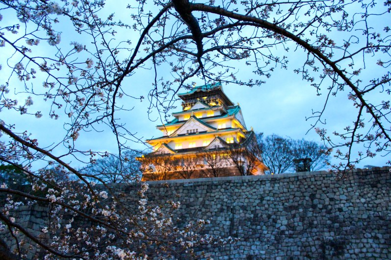 Osaka castle lit up at night during cherry blossom season