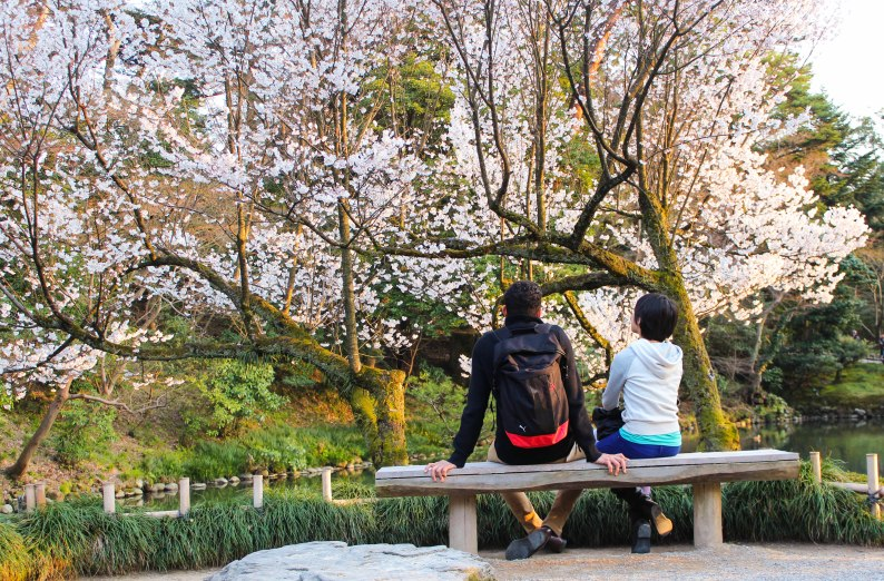 I can sit on this bench all day. At Kenroku-en, 2014