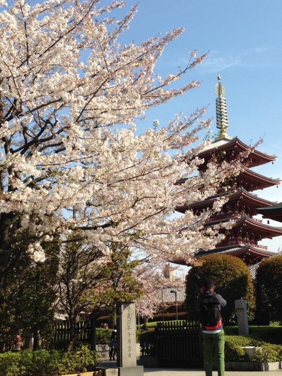 Strolling around Senso-ji, Tokyo