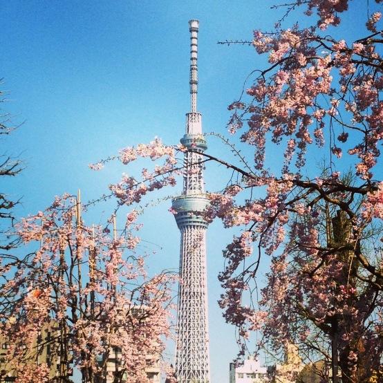 Tokyo sky tree, March 2014