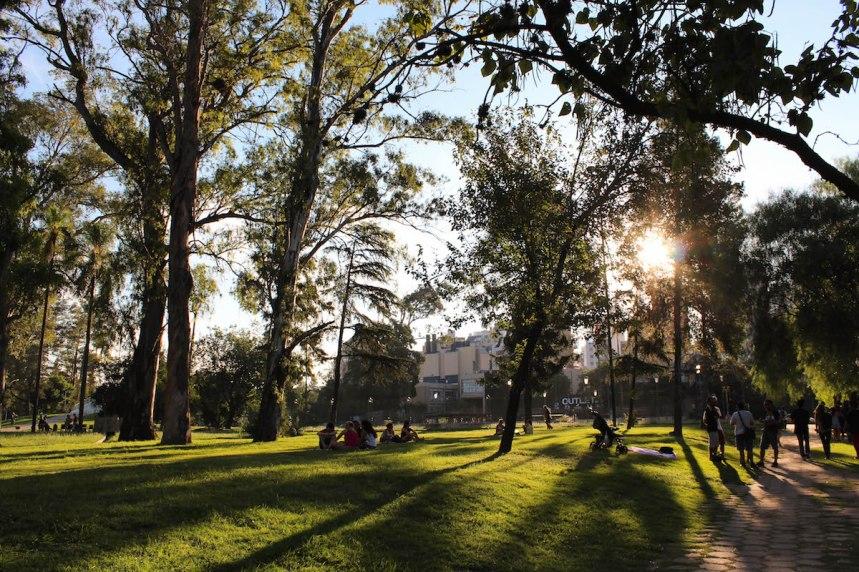 sun peering through the trees near sarmiento park